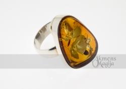 Gintarinis žiedas GRAŽINA