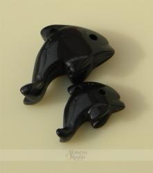 Onikso delfinai